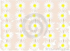 Floral background with colorful daisies