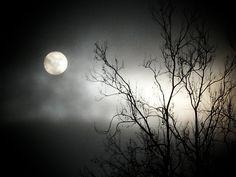 Love the moon...