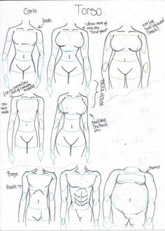 how_to_draw_different_body_types_by_takaya_ame-d55cgje.jpg 754×1.060 pixels