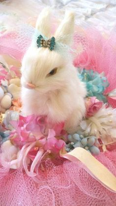 Felted Bunny:  this appeals to my inner girly, girly/princess!