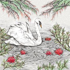 Leading Illustration & Publishing Agency based in London, New York & Marbella. Hand Illustration, Biodegradable Products, Rooster, Wildlife, Greeting Cards, Prints, Painting, Animals, Animales