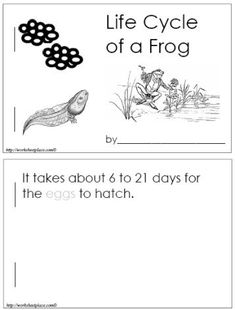 Frog Life Cycle: Students make pictures of the life cycle of a frog to go with the text in this book.