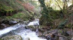 Paisaje senda del río Troncoso Water, Outdoor, Scenery, Fotografia, Gripe Water, Outdoors, Outdoor Games, The Great Outdoors