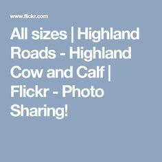 All sizes | Highland Roads - Highland Cow and Calf | Flickr - Photo Sharing!