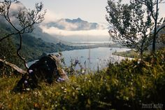 Hva en hyggelig dag (Waking in a tent) Mother Nature, Norway, Tent, Mountains, Travel, Store, Viajes, Tents, Destinations