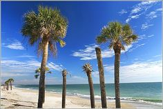Edisto Beach State Park - This beautiful oceanfront park is known for its abundant shell-laden beach.