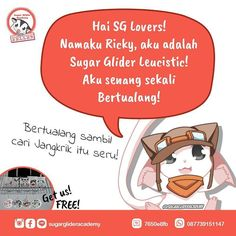 """Hi SG Lovers! My name is Ricky i'm a Leucistic Sugar Glider! I Really love Adventure!"" -Adventure while searching crickets is fun! . Order Produk SGA?  WA : 087739151147  BBM : 7650E8FB  Line : sugarglideracademy . #sugarglider #sugarglideracademy #sugarglideronlineshop #komikinajah #komiksga #sugargliderindonesia #フクロモモンガ #sugargliderjakarta #exoticpet #indoexoticpets #kpsgi #kpsgijakarta #sugargliderslover"