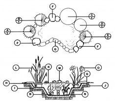 Water Garden - Downloadable Landscape Plans – Sheridan Nurseries