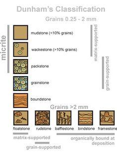 Dunham's Classification