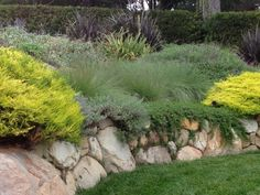natural stone retaining wall design ideas garden exterior Informations About natural stone retaining Boulder Retaining Wall, Retaining Wall Design, Garden Retaining Wall, Landscaping Retaining Walls, Sloped Garden, Modern Landscaping, Front Yard Landscaping, Hillside Garden, Garden Paths