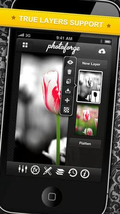 Best Apps for Taking, Editing and Organizing Photos - Techlicious