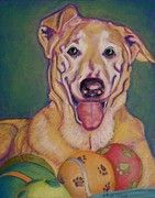 """""""I Share"""" & other Pawtrait prints and cards now available, portion of sales goes to Pet Rescue by Judy :D click image to go to site"""