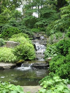 Rock Garden Cascade at the New York Botanical Garden