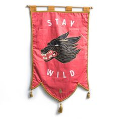 Stay Wild- Dan Chris