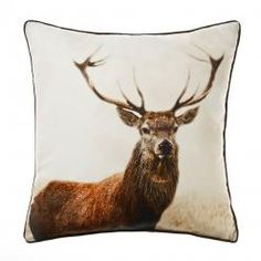 Home Republic Safari Red Dear Cushion, Cushions and soft furnishings from Adairs, discount home accessories