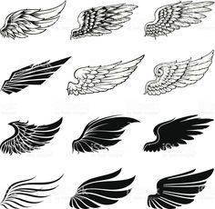 Wings collection royalty-free stock vector art
