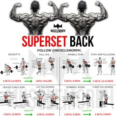 superset back back workout bodybuilding gym musclemorph musclemorphsupps…. – Hobbies paining body for kids and adult Big Back Workout, Gym Workout Tips, Weight Training Workouts, Fitness Workouts, Fitness Motivation, Traps Workout, Biceps Workout, Arnold Back Workout, Back Workouts