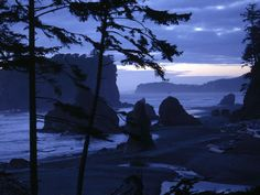 Forks beach at twilight. Our characters roam these beaches.  See my novel based on these images  http://wrsonovel.blogspot.com/