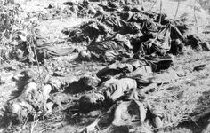 The Killing Fields: Victims of Cambodian Genocide