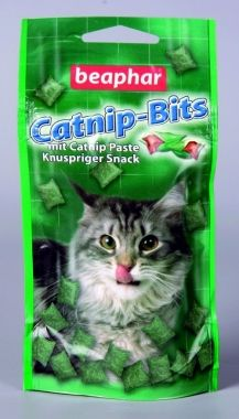 Cat Nip Bits with Cat Nip Paste. It makes my neighbour all excited and fun, its not for dogs though. Does nothing for me