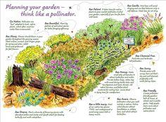 Pollinator Garden Design gardens_plan Pollinator Friendly Gardens