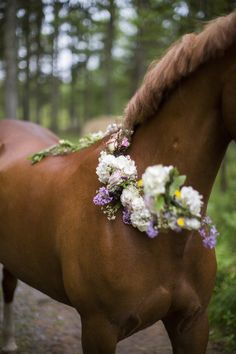 Fairytale forest styled shoot with flower decked horse....photo; @monamoem / Styling;  Dag Drômmerne/