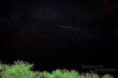 """Astrophotographer Lewis Cooper sent in a photo of a Lyrid meteor over Myton, Utah. He writes: """"... I saw a great one just as I was setting up the camera."""" (http://gonzoshots.com/)"""