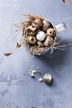 Quail Eggs by Natasha Breen - Photo 99251851 - Quail Eggs For Sale, Pickled Quail Eggs, Eggs In A Basket, Sources Of Dietary Fiber, Raising Backyard Chickens, Chicken Coop Plans, Chicken Runs, Food Backgrounds, Easter Celebration