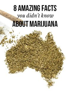 8 amazing facts you didn't know about marijuana | massroots.com