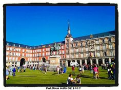 Césped nuevo en la Plaza Mayor de Madrid. New lawn in the Plaza Mayor of Madrid #cesped