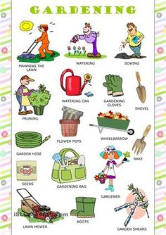 What does the phrasal verb call off mean watch what for Gardening tools meaning