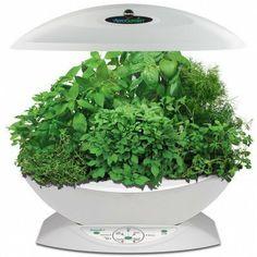 Miracle-Gro AeroGarden 7 with Gourmet Herb seed kit, White by AeroGarden, http://www.amazon.ca/dp/B00GG3R2WY/ref=cm_sw_r_pi_dp_wyKjtb1HZCH85