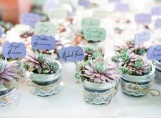 Succulent, mason jar, lace and twine wedding favors with name tags posted in each one.