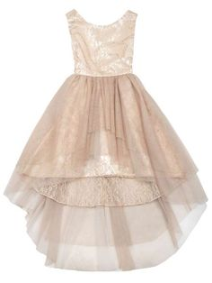 This with a sash for the flower girl. Rare Editions Girls Champagne Gold Lace / Glitter High / Low Holiday Party Dress