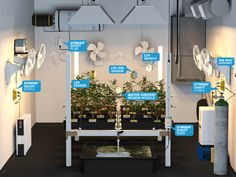Wireless marijuana grow room controllers monitor and control C02, lighting, root zone moisture, temperature, and humidity… and there's an app for that too.