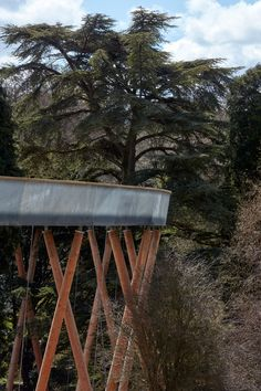 This elevated walkway by Glenn Howells Architects meanders through the treetops at the National Arboretum in Gloucestershire A As Architecture, Architecture Wallpaper, Tree Canopy, Pedestrian Bridge, Wallpaper Magazine, Forest Park, Urban Furniture, Modern Buildings, Landscape Design
