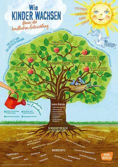 How children grow - tree of child development What K Wie Kinder wachsen – Baum der kindlichen Entwicklung Parenting Advice, Kids And Parenting, Kindergarten Portfolio, Smart Home Security, Growing Tree, Kids Corner, Child Development, Cute Kids, Project Life