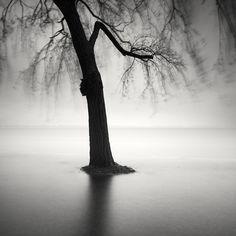 Day Of Rain Iii by Pierre Pellegrini on Art Limited