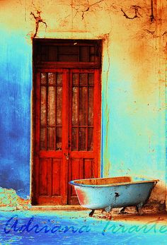 Mendoza. Argentina. By Adriana Iriarte... Let's step outside and take a bath... ! hahaha, but love the color scheme.