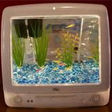 iMac Aquarium! i love this
