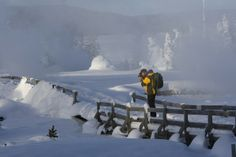 Yellowstone in Winter: Still Wonderful!: Photo Gallery by 10Best.com