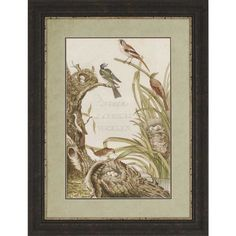 Sanctuary for Birds from Paragon (1354), $369.00