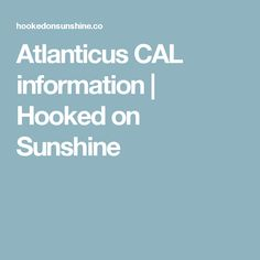 Atlanticus CAL information | Hooked on Sunshine