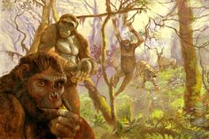 Ardipithecus ramidus: Study Links Ancient Hominid to Human Lineage Jan 10, 2014 by Sci-News.com A new study, published in the Proceedings of the National Academy of Science, confirms close relationship of Ardipithecus ramidus – a species of hominid that lived in the east of the African continent around 4.4 million years ago – to the subsequent Australopithecus and humans.