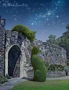 """Richard Saunders """"...The Topiary Cat is a surrealist photographic montage series based on my cat, Tolly..."""