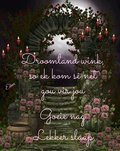 Lekker slapies Good Night Pick, Night Gif, Goeie Nag, Goeie More, Afrikaans Quotes, Good Night Quotes, Special Quotes, Sleep Tight, Day Wishes