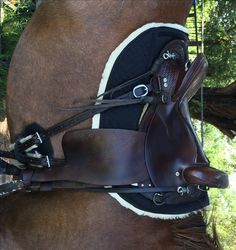 Full Sheepskin Endurance Round Skirt Saddle Pad. ThinLine technology helps to keep backs cool. The best shock absorption on the market.