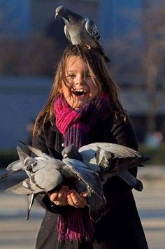 "Pigeon on the young girl's head:  ""Well!  I hope she chooses me to become THE 'Carrier Pigeon!'  The others are too interested in food!  Huh!  Hardly professional!"""