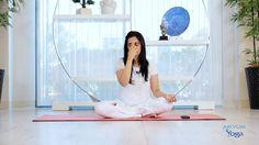 16 best yoga asanas for alzheimer's images  alzheimer's