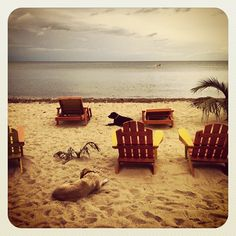 Spend a Noon in Placencia